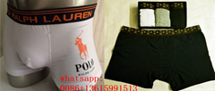 2019 top polo boxer LV underwear POLO underpant LV knickers POLO briefs