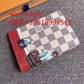 LV card bag