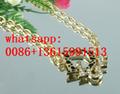 2019 top tiffany necklace tiffany bracelet tiffany ring tiffany earrings 20