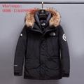 the north face jacket new APEX BIONIC JACKET denali fleece the northface coat