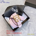 Black red blue colorful D&G belts younest DG belt low price