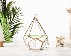 Geometry glass terrarium
