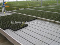 Ebb and Flow Benches for Greenhouse Hydroponic Cultivation
