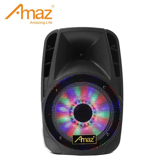 12 inch multifunctional PA Active Speaker System with FM function 1