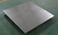 Digital Stainless Steel Floor Weighing