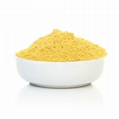 Factory supply natural dried Ginger powder price