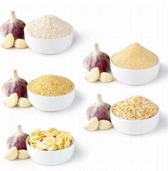 Dehydrated Garlic Granules air dried garlic granules