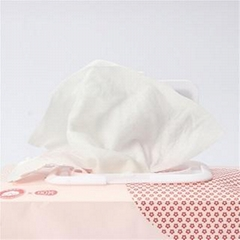 Free Lady Cleaning Private Parts Disposable Feminine Women Wet Wipes