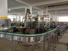 Pet Bottle Carbonated Drink Washing-Filling-Capping Monoblock Machine