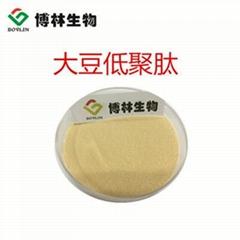 大豆低聚肽