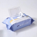 mini No addictive feminine Newborn cloth baby sanitizer wet wipes tissue 4