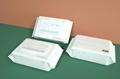 mini No addictive feminine Newborn cloth baby sanitizer wet wipes tissue 1