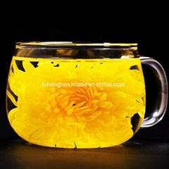 Macheng Yellow Chrysanthemum High Grade
