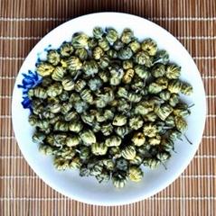 Macheng Embryonic Chrysanthemum Tea