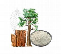 High Quality Yohimbe extract powder (2%-8% Yohimbines, 98% Yohimbines (HCL))
