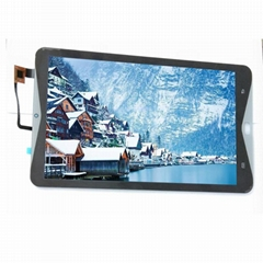 IPS 10.1 inch tft lcd Screen Tablet PC 1280*800 LVDS Interface touch panel