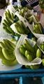 Fresh Cavendish Banana  3