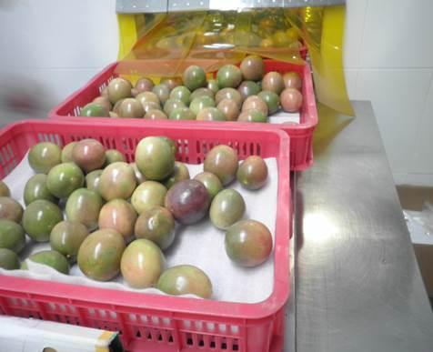 Passion Fruit pulp 2