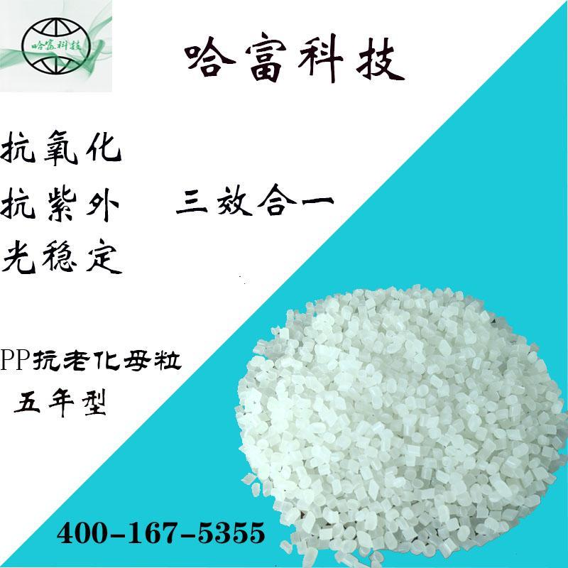 聚丙烯PP抗老化母粒HF-03-HH1010M 2
