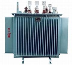 S11變壓器   100KVA全密封配電變壓器