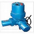 调节型Q90-1W/T电动装置