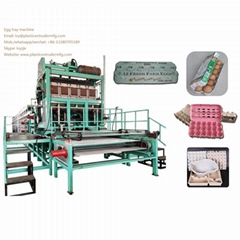 DY-300 Pulping Egg Tray forming Machine