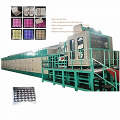 DY-4000 Pulp Egg Tray forming Machine
