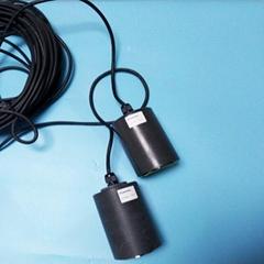 Ultra sound control device blue green algae