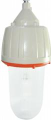 溫州CCD92系列防爆照明燈