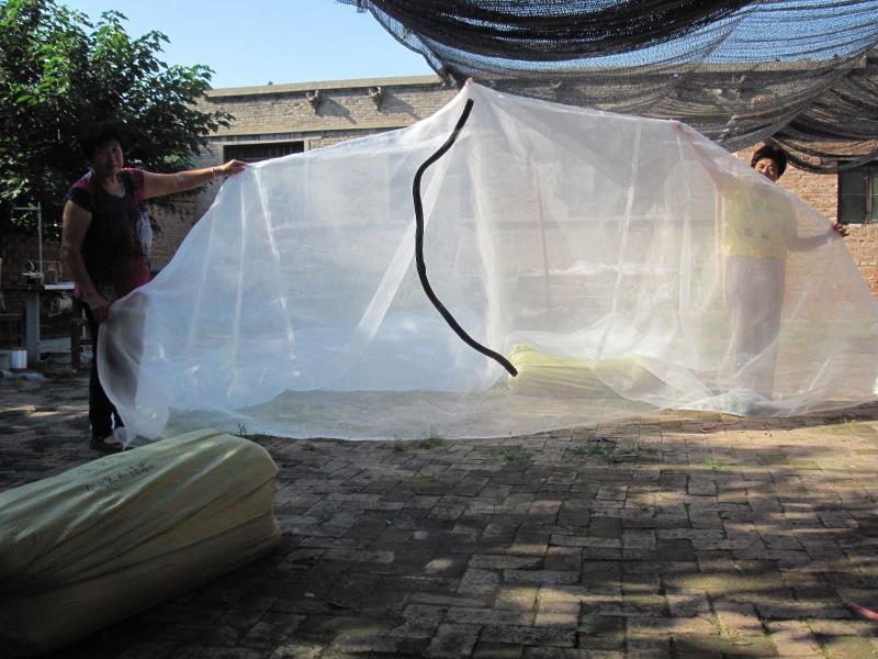 純料加厚的螞蚱養殖紗網 1
