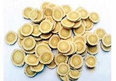 陝西滕燦有機藥材種子出售  黃芪