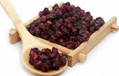 陝西滕燦藥材種子出售   五味子