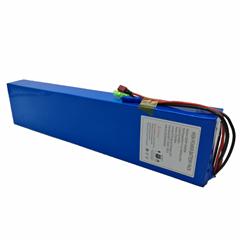 36V 8.8Ah Li-ion Battery