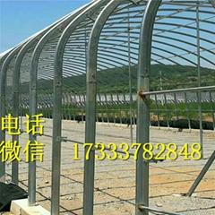 生物溫室設備