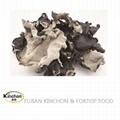 Dried black mushroom Whole