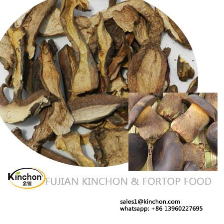 Dried Boletus Aereus Mushroom Wholesale Price 1