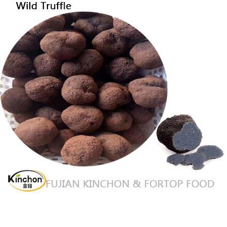 Wild Black Tuber dried truffle 1