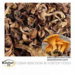 Yellow Wild Chanterelles Dried Mushrooms