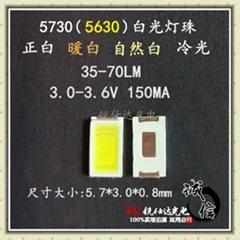 5730白光LED發光二極管LED燈管照明專用
