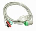 Biolight ECG cable 12 pins