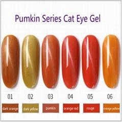 3D Cat Eye Soak Off Nail Gel Polish UV Gel Pumpkin Series Healthy Manicure