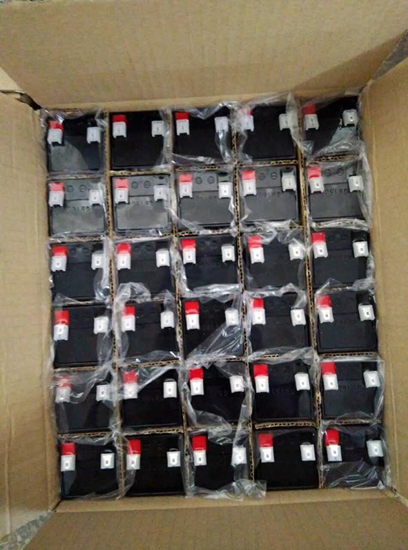 玩具及應急燈用蓄電池4V4.5AH 4