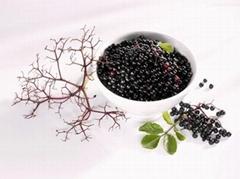 Grelide™接骨木莓提取物