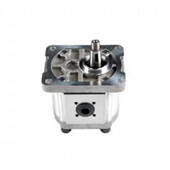 Hydraulic Gear Oil Pump and Motor