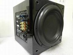 Sunfire XTEQ 10' Inch Powered 2700 Watt Subwoofer Box Gloss Black XTEQ10