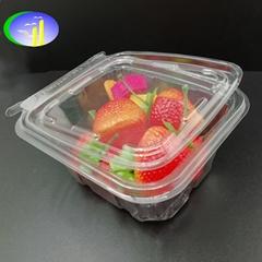 Take away disposable plastic transparent