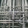 Ga  anized Fixed Knot Fence