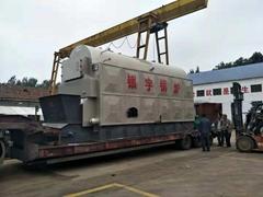 Coal/biomass fired horizontal steam boiler