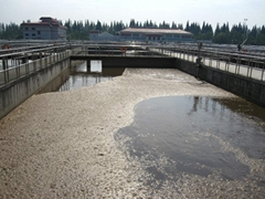 污水處理劑