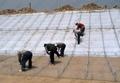 河北絲網生產銷售石籠護墊防滑石籠護墊諾華品牌銷售 4
